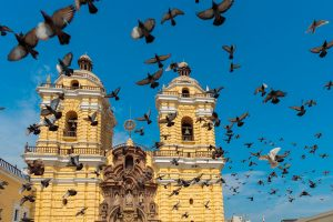 City tour Lima, Convento de San Francisco, Catacumbas
