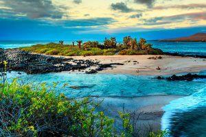 Islas Tintoreras, Galápagos
