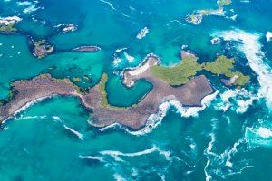 Las tintoreras Islas Galápagos